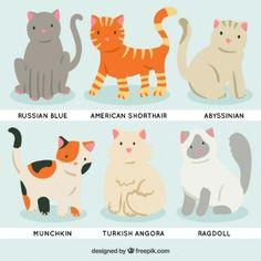 Razas de gato de dibujos animados