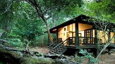 Guests can spot the big five, dolphins and turtles at this lodge at the Phinda Game Reserv...