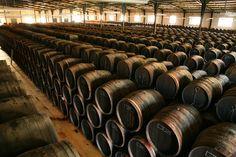 Vinagres Sur de España, la bodega