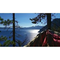 shouts out to hammocks and amazing view #bcgoessouth #bestoforegon #grandtrunk #craterlake
