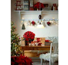 8 nápadov ako vianočnú ružu zakomponovať do výzdoby | DOMA.SK Poinsettia, Xmas, Christmas Tree, Christmas Decorations, Holiday Decor, Ideas Para, Home Decor, Red Leaves, Flowers