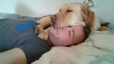 His face is the best pillow!