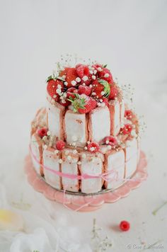 ... strawberry, rhubarb and rosewater charlotte ... by COCO & BAUNILHA