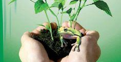 Duurzame vloerverzorging met Tana Greencare
