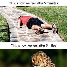 Just gotta get past the first mile, then you're golden!
