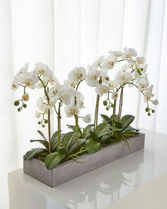 Shop Orchid Phalaenopsis White Planter Concrete Fin from NDI at Horchow, where you'll find new lower shipping on hundreds of home furnishings and gifts.T&C Floral Company White Orchid Faux-Floral Arrangement in Wooden BowlLiven up your living space w Orchid Flower Arrangements, Orchid Planters, Orchid Centerpieces, Succulent Centerpieces, White Planters, Orchid In Vase, Orchid Seeds, Table Arrangements, Fleur Design