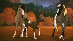 Spirit The Horse, Spirit And Rain, Horse Drawings, Animal Drawings, Indian Horses, Horse Books, Horse Names, Speed Paint, Art Drawings Sketches Simple