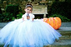 Cinderella - Costume Tutu Dress via Etsy. I would have loved every minute of wearing this as a little girl. Cinderella Tutu Dress, Cinderella Birthday, Toddler Cinderella Costume, Cinderella Wedding, Birthday Tutu, Little Princess, Princess Photo, Princess Tutu, Fancy Dress