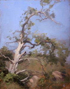 ~ Adrian Gottlieb: Tree by Laguna Beach,