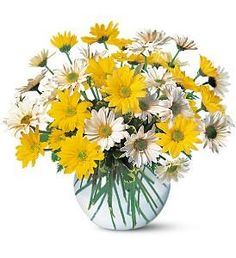Columbus, Ohio flower delivery made easy with Giffin's Floral Designs. Our floral arrangements are unique flower designs created with artistic flowers flare, and then hand-delivered to your loved one's door. Easter Flowers, Summer Flowers, Colorful Flowers, Chrysanthemum, Get Well Soon Flowers, Yellow Bridal Showers, Send Flowers Online, Mason Jar Centerpieces, Flower Centerpieces