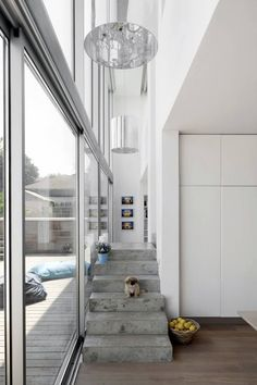 narrow passage with cement stairs (Sharon Neuman Architects & Oded Stern-Meiraz)