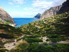 Die 5 schönsten Wanderwege auf Mallorca - TRAVELBOOK.de