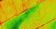 TerrAvion is taking data analytics to a new place with its cloud-based imaging program.
