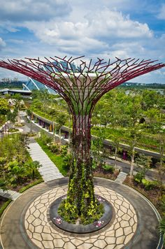 Garden By The Bay Food the top of supertree grove at gardensthe bay | nightlife, food