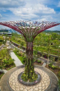 gigantescos rboles metlicos en singapur