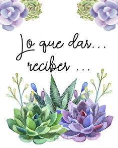 Feather Art, Garden Quotes, Witch Aesthetic, Cactus Y Suculentas, Gardening For Beginners, Watercolour Painting, Cactus Plants, Aesthetic Wallpapers, Gardens