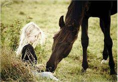 """WEBQUEST: """"Los caballos en la Historia y la Historia de los caballos"""""""