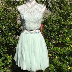 Beautiful 2 Piece Mint Lace Top & Chiffon Skirt This set is from a Prom wear line. Top is fully lined around bust so you don't have to wear a bra. Lace with silver threading, zips all the way down & bottom is bound in satin. Skirt is 2 layers & 3rd layer of tulle. Top of skirt is bound in station & Crystal embellished all around. NWT Steppin Out Dresses