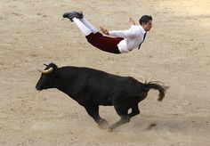 Image of the day Monday, December 22: A Spanish recortador jumps over a bull during a show in Cali, Colombia. REUTERS/Jaime Saldarriaga