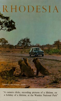 Wankie, Rhodesia Out Of Africa, East Africa, Zimbabwe History, Old Signs, All Nature, Vintage Travel Posters, Africa Travel, Old Pictures, Cool Artwork