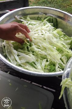 How to Freeze Cabbage meals to freeze How to Freeze Cabbage Fried Cabbage Recipes, Bacon Fried Cabbage, Cooked Cabbage, Canning Cabbage, Freezing Vegetables, Frozen Vegetables, Dehydrated Vegetables, Veggies, Freezing Cabbage