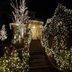 500LED 100m Lichterkette Weiß Innen Außen Party leuchten Weihnachtsbeleuchtung in Möbel & Wohnen, Feste & Besondere Anlässe, Jahreszeitliche Dekoration | eBay