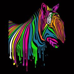 Rainbow Zebra. REMIX!