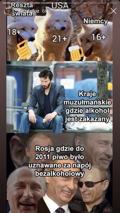 Smart People, Good People, Wtf Funny, Funny Memes, Polish Memes, Best Memes Ever, Aesthetic Memes, Nyan Cat, Great Memes