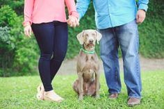 engagement picture idea with your dog   photo by Kreative Angle Photography
