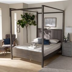 Natasha Modern and Contemporary Platform Canopy Bed - Overstock - 31227065 - King Bedroom Furniture Stores, Furniture Deals, Platform Canopy Bed, Steel Canopy, Mdf Wood, Large Furniture, Contemporary, Modern, Master Bedroom