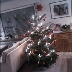 Weihnachten kann kommen! Christmas Tree, Holiday Decor, Home Decor, Pictures, Holiday Decorating, Xmas, Homemade Home Decor, Xmas Tree, Xmas Trees