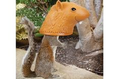 Big Head Squirrel Feeder