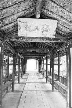 Ajiro, Bridges, Tortoise, Sidewalk, Chinese, Architecture, Style, Tortoise Turtle, Arquitetura