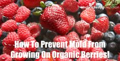 How To Prevent Mold From Growing On Organic Berries - Whole Lifestyle Nutrition
