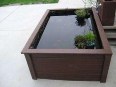 Outdoor fish pond