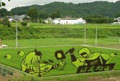 China Rice Field Art   Rice Field Art - China   LUUUX