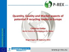 (1) P-Rex - Quantity, Quality and Market aspects of potential P recycli...