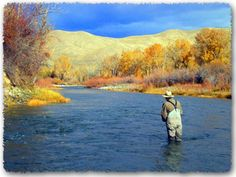 Fly Fishing Idaho Rivers | Idaho fly fishing in the Salmon River - Best Times to fly fish in ...