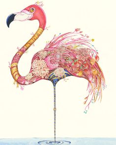 What do you call a group of Flamingos? A flamboyance! surely the most apt group name ever! Pink Painting, Flamingo Art, Nature Artists, Bird Artwork, Bird Illustration, Illustrations, Tropical Birds, Japanese Prints, Illustrator Tutorials