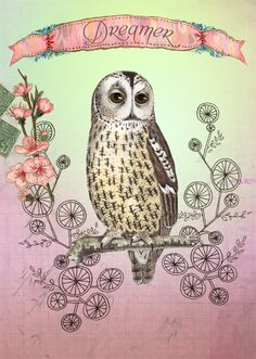 "Illustration depicting an owl labeled ""Dreamer""...."