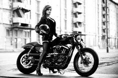 Hot Harley Davidson Chicks