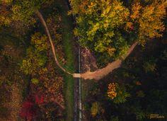 Autumn Forest & Small Road - Photo: Jozef Kadela Facebook: fb.com/jozefkadela  Instagram: instagram.com/jozef_kadela  Youtube: https://www.youtube.com/user/kadelaj  You can buy my photos writing me by email: kadelaj@gmail.com