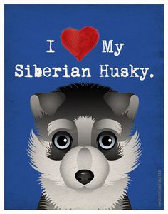 I Love My Siberian Husky - I Heart My Husky - I Love My Dog - I Heart My Dog Print - Dog Lover Gift Pet Lover Gift - 11x14 Dog Poster. $20.00, via Etsy.