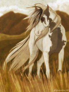 "Thunder looked across the prairie, a white winged horse was heading towards him. ""Is that the Pegasus?"" He wondered to himself. He hadn't heard that Star of Death came back."