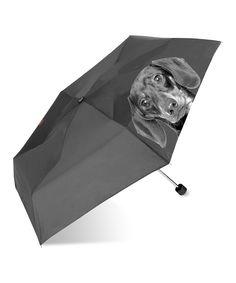 Black Dachshund Umbrella