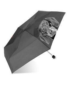 Black Dachshund Umbrella