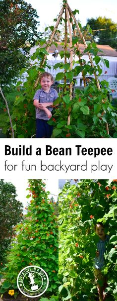 For a backyard project to do with kids this summer, try building a bean teepee. It's an easy gardening project and a great natural play tent for little explorers.