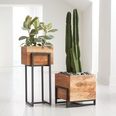 Designed by Kristine Morich and handmade by skilled artisans, richly grained acacia wood planters nest in black powdercoated iron stands. Our exclusive wood and metal planters provides a spot for plant life on the floor, the Patio Lounge Furniture, Metal Furniture, Custom Furniture, Furniture Design, Unique Furniture, Acacia Wood Furniture, Furniture Dolly, House Plants Decor, Plant Decor