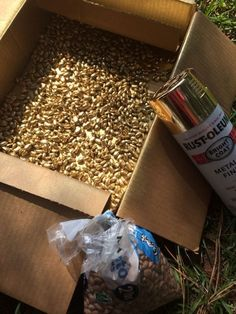 Spray pinto beans with gold spray paint. Cheap vase filler fill diy simple e Spray pinto beans with gold spray paint. Cheap vase filler fill diy simple e Tinta Spray, Decoration Evenementielle, Cheap Vases, Gold Spray Paint, Silver Spray, Copper Spray, Vase Fillers, Partys, Anniversary Parties