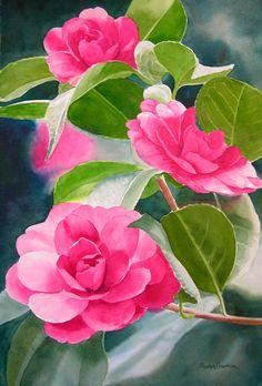 Rose Colored Camellia Original Watercolor Painting